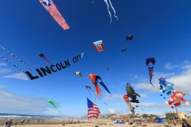 Kite-Festival-Flag