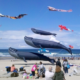 Whale-Pod